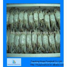Frozen live crabs