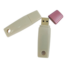 Material plástico simple USB Flash Drive a granel