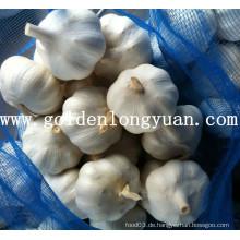 Gute Qualität Reiner weißer Knoblauch aus der Fabrik