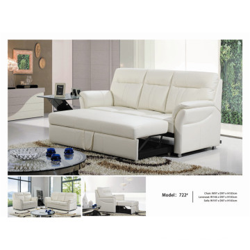 Electric Recliner Sofa USA L&P Mechanism Sofa Down Sofa (722#)