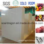 Walk in Cooler for Food Refrigerated Storage