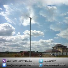 Turbina de vento pequena de ímã permanente (Sunning 1000W)
