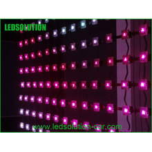 Ecran LED d'intérieur à bande enroulable P80