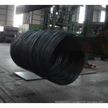 Fil en acier laminé à chaud en bobine pour la construction