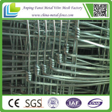 High Tensile Hinge Joint Field Fence for Sale