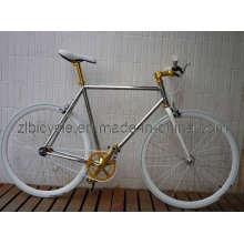700c Hot Sale Bike Fashion Single Speed Fixed Gear Bicycle