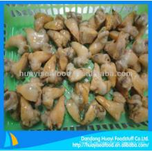 Carne de vacuno congelada en crustáceos para la venta