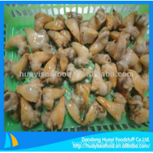 frozen whelk meat in shellfish for sale