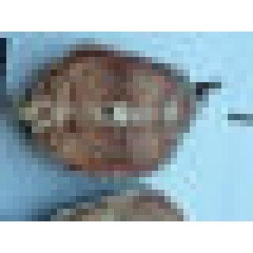 Pangasius congelado (peixe de gato eviscerado)