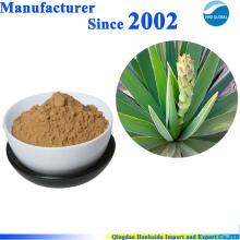 100% reines natürliches Yucca Schidigera Pulver Extrakt