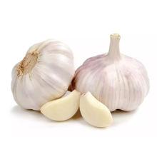 Red Garlic Pure White Garlic Chinese Supplier