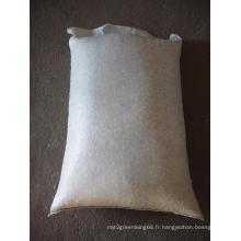 Graine de citrouille blanc neige de 13 cm