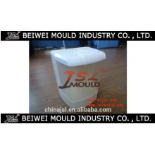 Fabricação plástica do molde do purificador da água