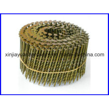 Galvanized Coil Roofing Nail for Air Gun