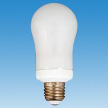 Globe vorm energiebesparende Lamp