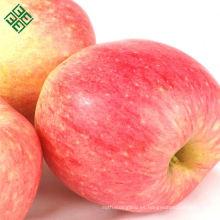 manzana fresca jugosa roja fresca manzana fuji chino (gala)