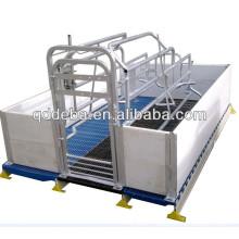 Table obstétricale de truie galvanisée de haute qualité
