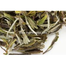 Chá Branco Peônia Branca Muito Alta Qualidade