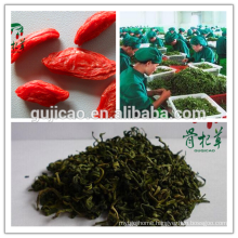 Goji leaf tea /Wolfberry leaf Tea