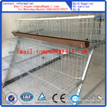 Egg Layer Chicken Cage / Chicken Cage