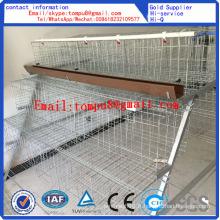 Cage de poulet / Cage de poulet