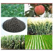 Vários tipos Composto Fertilizante de fosfato de diamônio 18-46-0 DAP Fertilizante
