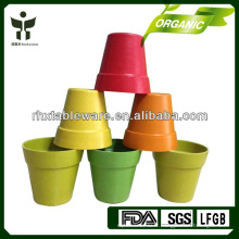 Eco-friendly Poteau de jardin biodégradable Fleur de plante à fleurs