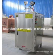 Générateur de vapeur électrique en acier inoxydable (36KW))