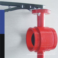 Cast Steel Grooved Butterfly Valve