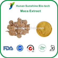 Alta calidad orgánica Maca Powder 4: 1/5: 1/10: 1 muestra gratis