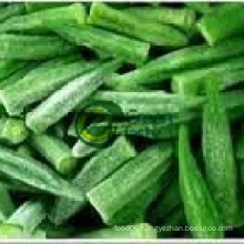 IQF Frozen Wholesale Baby Okra
