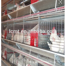 Poultry layer battery chicken cage for Nigeria farm