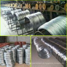 Electro / Hot Dipped Alambre de alambre de alambre de alambre / alambre de hierro galvanizado