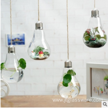 Small Hanging Clear Glass Teardrop Vase Irregular Terrarium