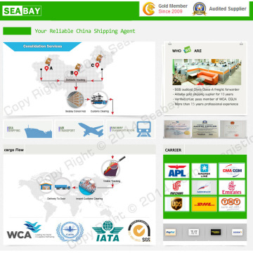 Profesional Local Qingdao Shipping Company