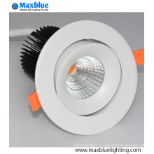 Hole 90mm COB LED plafonnier avec marque Meanwell Driver
