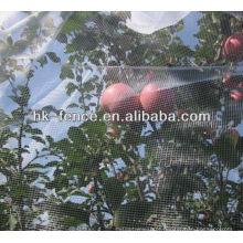 Rede da agricultura / malha do inseto / rede de malha da árvore de fruto