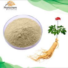 80% ginsenosides panax ginseng extract powder