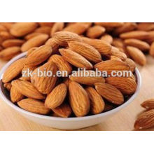 Almond Nuts Sweet