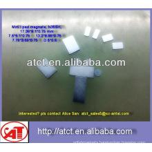 High Quality Sintered Neodymium Magnet/ long thin magnets