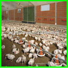 Advanced automatic poultry feeding system (Chicken,Duck)