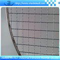Stainless Steel Barbecue Wire Mesh Used for Picnic