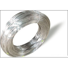 Export 99% Purity Titanium Wire