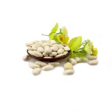 Arten von weißen Bohnen Long Form Crop 2017
