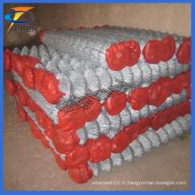 Filetage en fil galvanisé en fil métallique