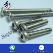 Fabriqué en Chine T5 Torx Screw