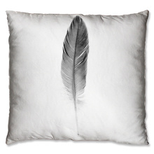 Single feather design cushion