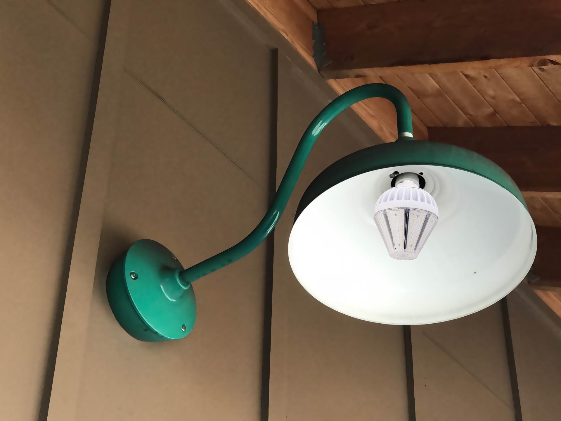 30W LED Garden Light (16)