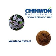 Extrait de racine Valeriana acide valérique 0,8% HPLC