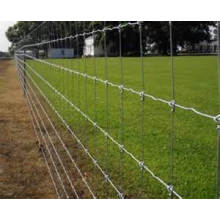 Galvanized Knotted Wire Mesh Fence (XM-F-3)